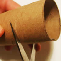 cutting toilet roll