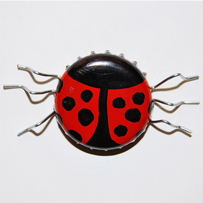completed lady bug